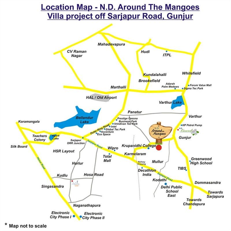 around the mangoes location image8