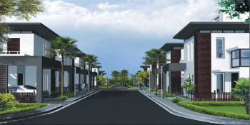 pearl palm vistas project large image2 thumb