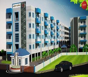 Asset Builders Elvira Flagship