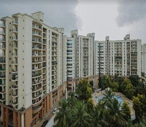 India Platinum City Flagship