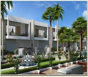 Globus Coral Casa Row House Flagship