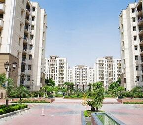 tn balaji chandigarh royale city flagshipimg1