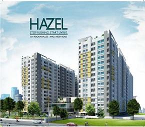 Hazel Flagship