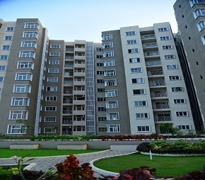 Prime Arete Homes Flagship