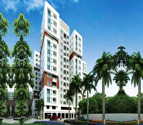tn radiance mandarin cozy project flagship1
