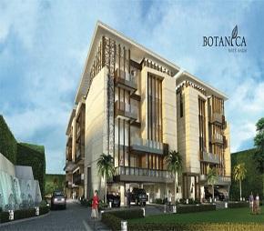 Aarone Botanica Flagship