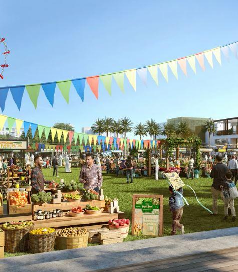 emaar the valley amenities features11