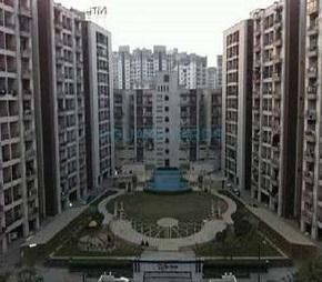 Apex India Moon City Flagship