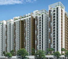 Color Homes Phase-II Flagship