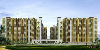 himalaya pride project large image4 thumb
