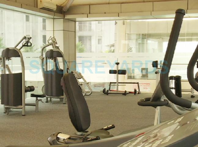 gymnasium-image-Picture-paramount-golfforeste-2876524