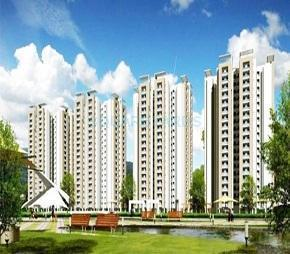 Ajnara Panorama Facing F1, YEX Sector 22, Greater Noida