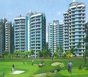 Apex Golf Avenue Sports City, Noida Ext Sector 1, Greater Noida