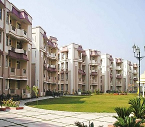 Ashiana Black Gold Apartments Flagship