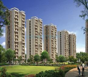 Cosmic Urban Young, YEX Sector 25, Greater Noida