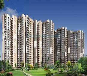 Exotica Dreamville, Noida Ext Sector 16C, Greater Noida