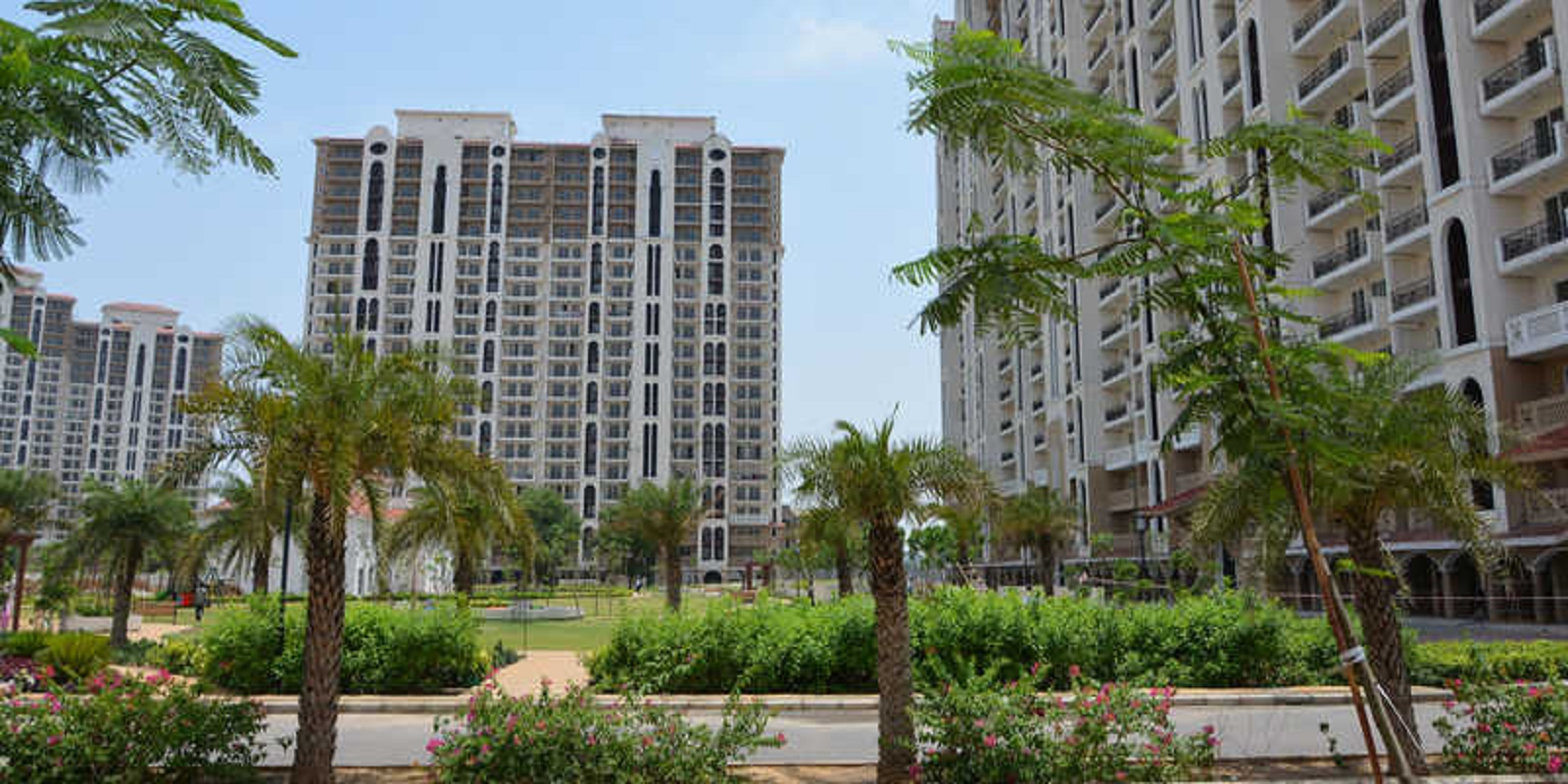 dlf new town heights i project project large image1