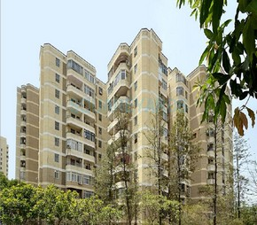 4 BHK  Apartment For Rent in DLF Silver Oaks