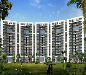 4 BHK  Apartment For Rent in Tulip Violet