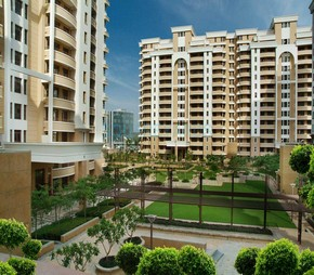 5 BHK  Apartment For Rent in Vipul Belmonte
