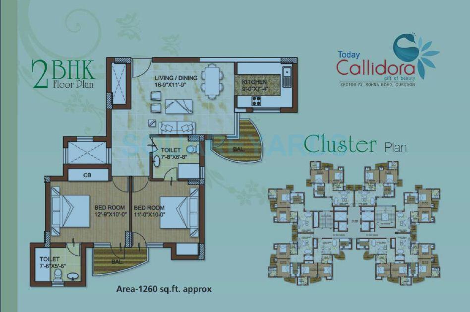 today callidora apartment 2bhk 1260sqft 1