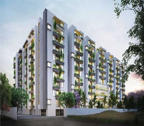 Manbhum Around The Grove, Hitech City, Hyderabad