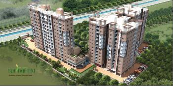 rajwada springfield project large image1 thumb