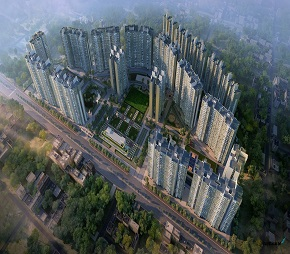 Shapoorji Codename Home Next Flagship