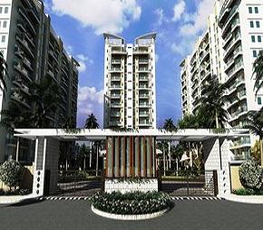 Gold Star Homes Flagship
