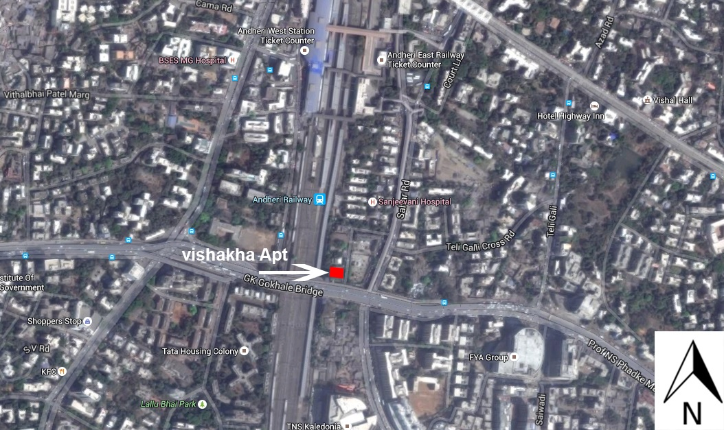 green tree lifescapes vishakha location image1