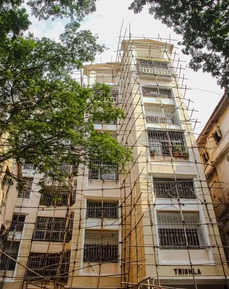 neumec trishala apartments project tower view1