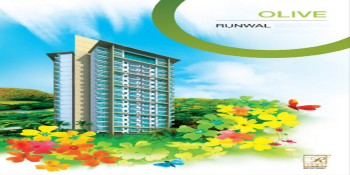 runwalolive project large image3 thumb