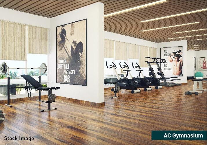 veena senterio project amenities features4