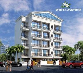 SPS White Jasmine Flagship