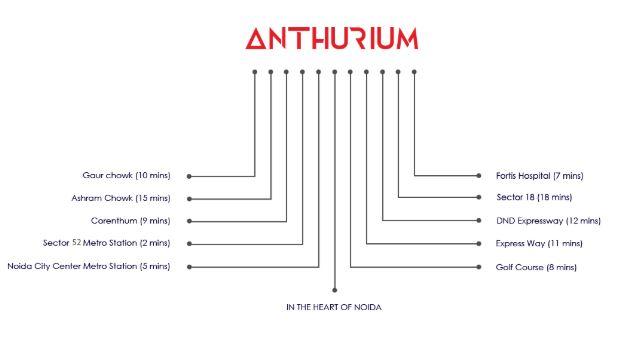 anthurium location image8