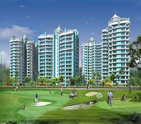 tn aims golf avenue i flagshipimg1