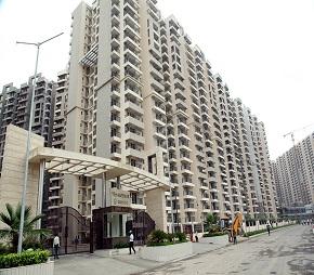 tn gaur city 2 11th avenue flagshipimg1