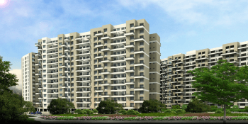 calyx navyangan project large image1 thumb