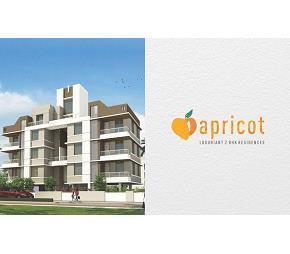 Achalare Apricot Flagship