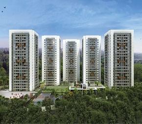 Mittal Pebbles High Mont Phase 1, Hinjewadi, Pune
