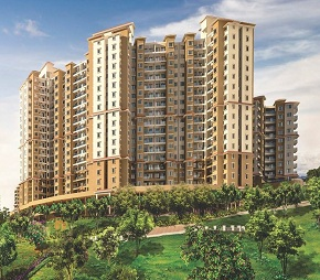 Paranjape Forest Trails Highland Tower 9 10 and 11 Flagship