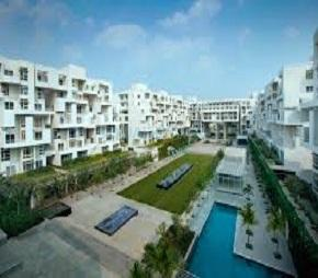 1 BHK 800 Sq.Ft. Apartment in Rohan Mithila